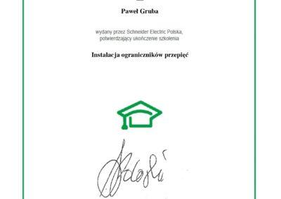 Instalacja_ograniczników_przepięć-Certyfikat_533_page-0001